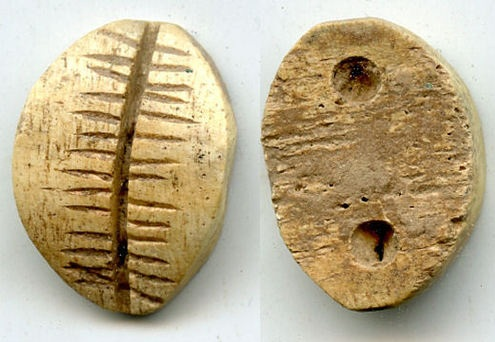 Ancient Chinese Cowry Shell
